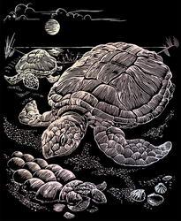 Гравюра голографическая Морские черепахи